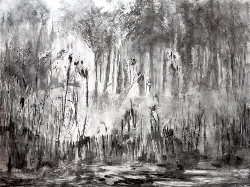 Mogelijkheden 2, 2014, houtskool op papier, 110 x 145 cm