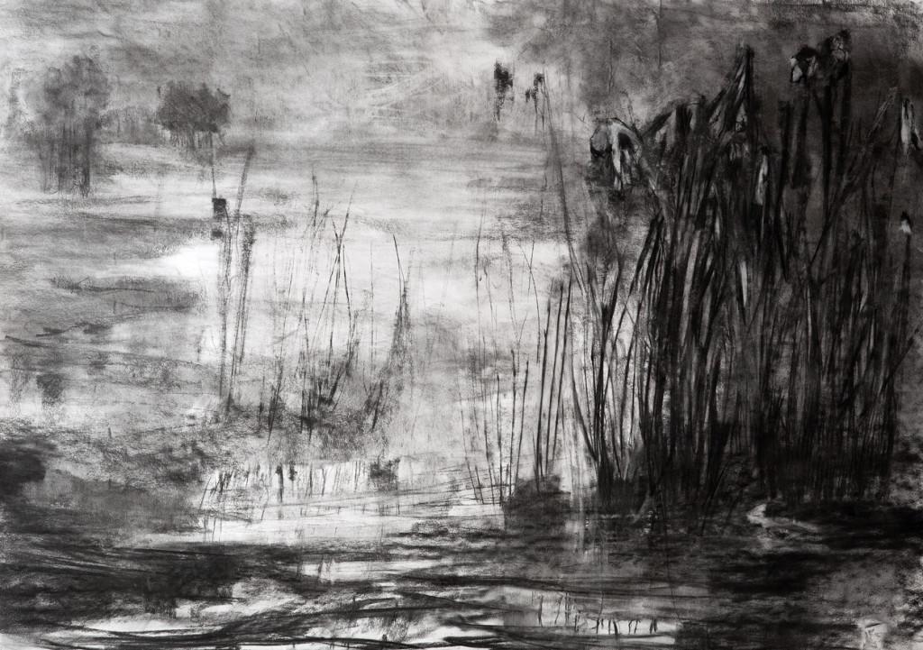 Na de regen, 2014, houtskool op papier, 100 x 140 cm
